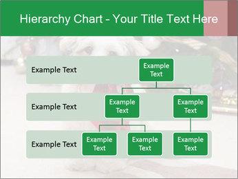 0000083605 PowerPoint Templates - Slide 67