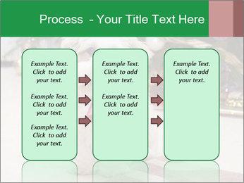 0000083605 PowerPoint Templates - Slide 86