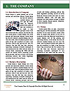 0000083613 Word Template - Page 3