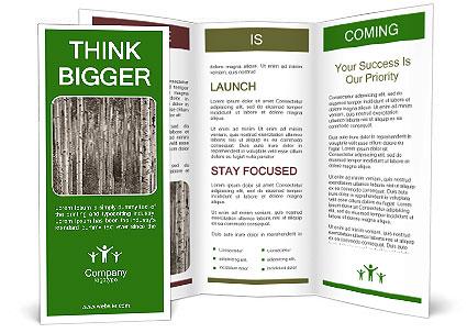 0000083617 Brochure Template