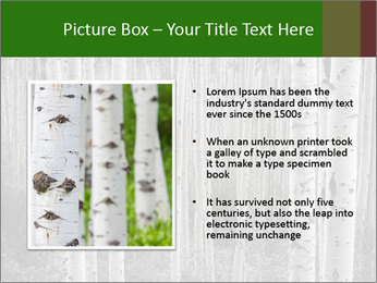 0000083617 PowerPoint Template - Slide 13