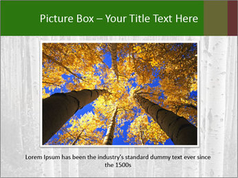 0000083617 PowerPoint Template - Slide 16