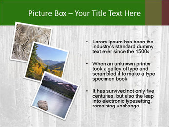 0000083617 PowerPoint Template - Slide 17