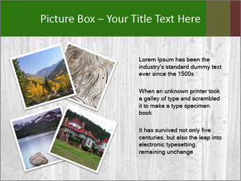 0000083617 PowerPoint Template - Slide 23