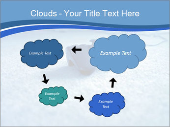 0000083620 PowerPoint Templates - Slide 72
