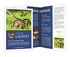 0000083623 Brochure Templates