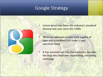 0000083623 PowerPoint Templates - Slide 10