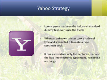 0000083623 PowerPoint Templates - Slide 11