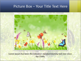 0000083623 PowerPoint Templates - Slide 15