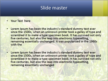 0000083623 PowerPoint Templates - Slide 2