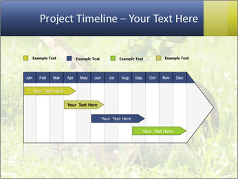0000083623 PowerPoint Templates - Slide 25