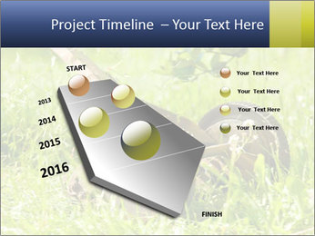0000083623 PowerPoint Templates - Slide 26