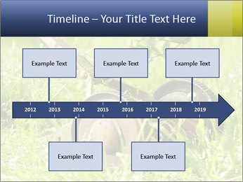 0000083623 PowerPoint Templates - Slide 28