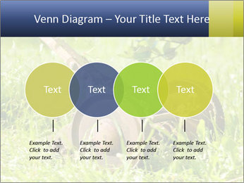 0000083623 PowerPoint Templates - Slide 32