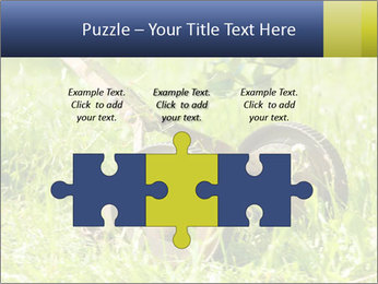 0000083623 PowerPoint Templates - Slide 42