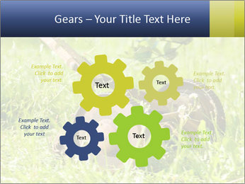 0000083623 PowerPoint Templates - Slide 47
