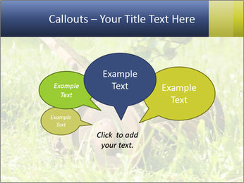 0000083623 PowerPoint Templates - Slide 73