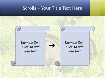 0000083623 PowerPoint Templates - Slide 74