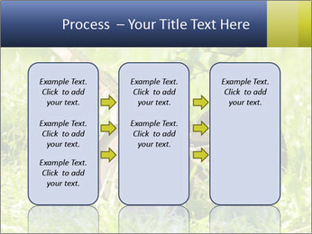 0000083623 PowerPoint Templates - Slide 86