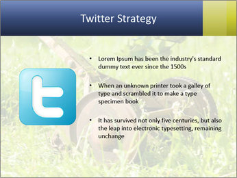 0000083623 PowerPoint Templates - Slide 9