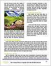 0000083623 Word Template - Page 4