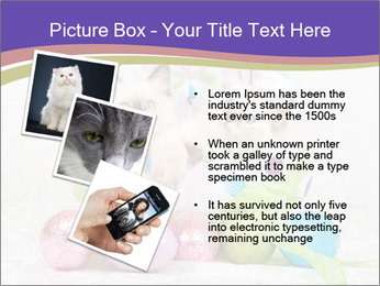 0000083626 PowerPoint Template - Slide 17