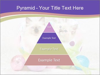 0000083626 PowerPoint Templates - Slide 30
