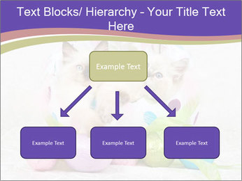 0000083626 PowerPoint Template - Slide 69
