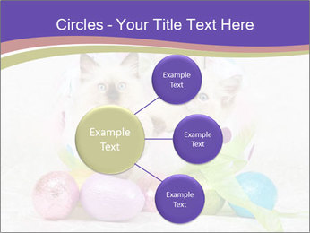 0000083626 PowerPoint Templates - Slide 79