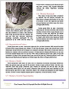 0000083626 Word Template - Page 4