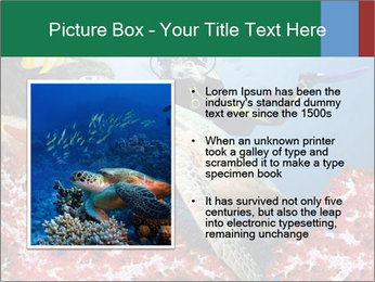 0000083627 PowerPoint Templates - Slide 13