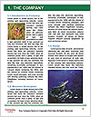 0000083627 Word Template - Page 3