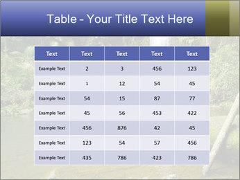 0000083630 PowerPoint Templates - Slide 55