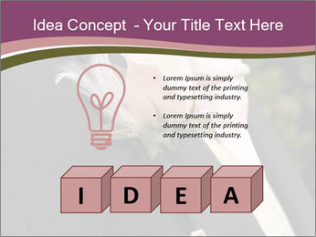 0000083632 PowerPoint Template - Slide 80