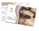 0000083633 Postcard Templates