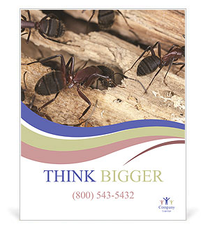 0000083633 Poster Template
