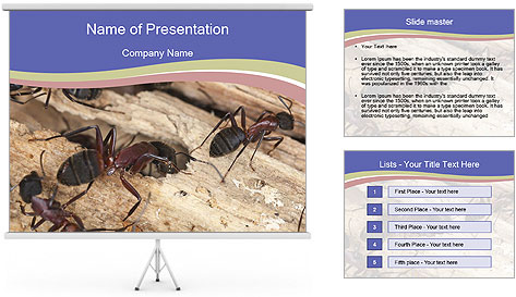 0000083633 PowerPoint Template