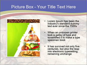 0000083633 PowerPoint Template - Slide 13