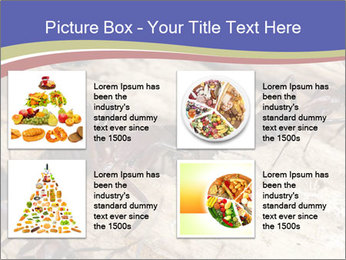 0000083633 PowerPoint Template - Slide 14