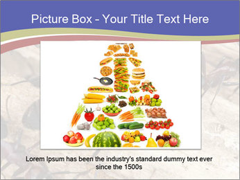 0000083633 PowerPoint Template - Slide 15