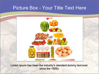 0000083633 PowerPoint Template - Slide 16