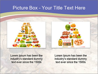 0000083633 PowerPoint Template - Slide 18