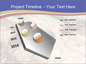 0000083633 PowerPoint Template - Slide 26