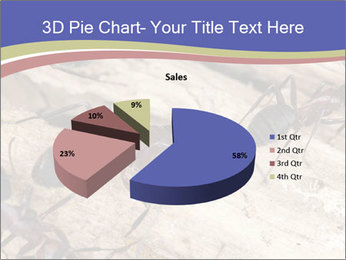 0000083633 PowerPoint Template - Slide 35