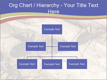 0000083633 PowerPoint Template - Slide 66