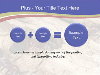 0000083633 PowerPoint Template - Slide 75