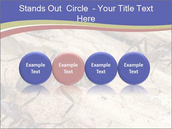 0000083633 PowerPoint Template - Slide 76