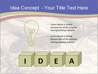 0000083633 PowerPoint Template - Slide 80