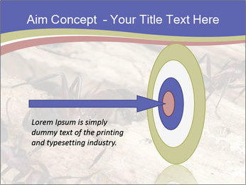 0000083633 PowerPoint Template - Slide 83