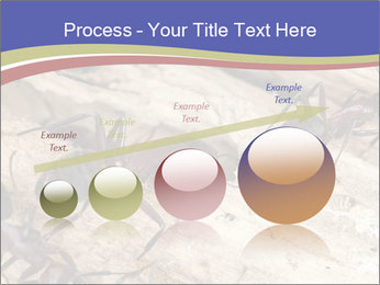 0000083633 PowerPoint Template - Slide 87